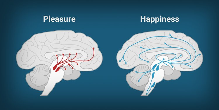 prazer felicidade psicoterapia